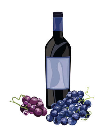 red grape: Bottle of Red Wine and grapes Vector Vintage illustration