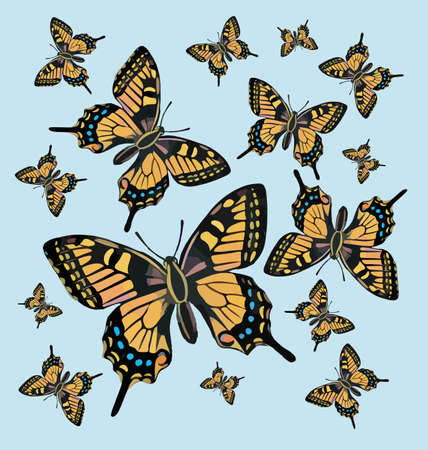 butterfly background: Butterfly pattern background Vector