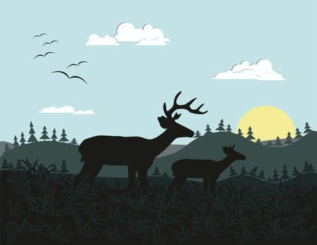 wild nature: Two deer silhouette. Wild Nature background