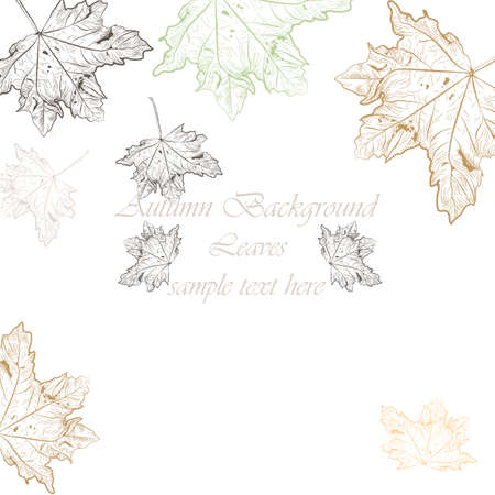 lithograph: Autumn Vintage background. autumn tree leaves pattern. Retro engraved technique