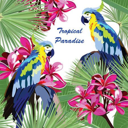 Exotic card with parrot birds and flowers. Summer Tripocal Paradise background illustration