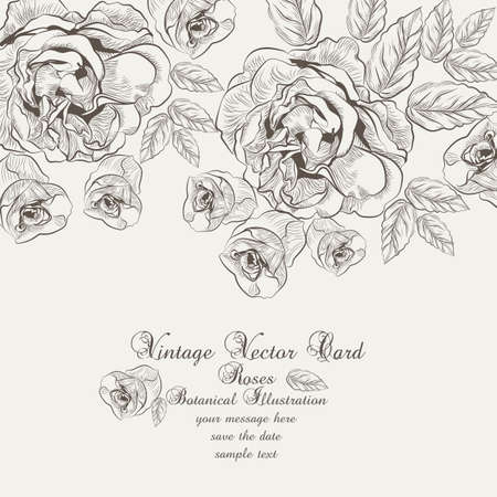 lithograph: Floral Vintage Invitation card. Black and white Garden Roses. Festive Postcard for weddings, ceremony, events.  engraved technique Illustration