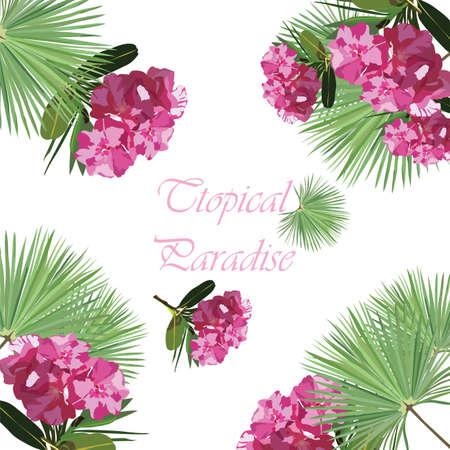 subtropics: Tropic flowers card. Tropic Exotic floral background