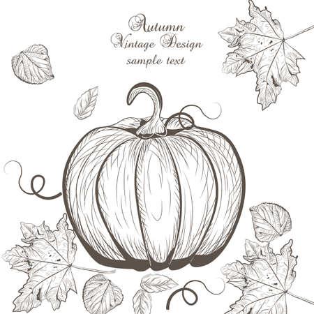 lithograph: Pumpkin Autumn Vintage card background.autumn tree leaves. Retro engraved technique