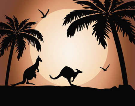 Kangaroo silhouette on sunset with palms. Vector background