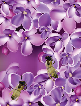 revive: Lilac flowers Realistic Vector illustration with bees collecting honey. Beautiful Spring floral Background