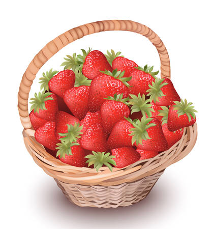Strawberry fresh fruits in a basket. Vector illustration