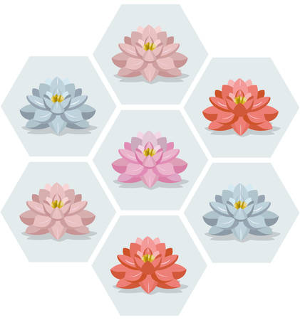 Waterlily flowers set pattern Vector illustration floral season fusion