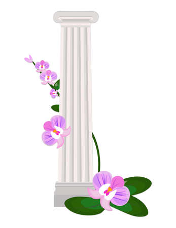roman pillar: Greek Ionic columns order vintage design Vector illustration