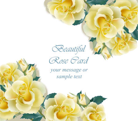 Yellow roses card Vector. delicate summer card. Springtime fresh natural composition