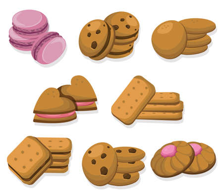 Delicious dessert chocolate cookies set collection vector illustrations