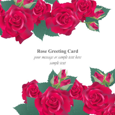 Red roses card Vector. delicate summer card. Springtime fresh natural composition Ilustração