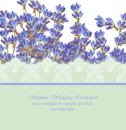 Lavender card province style. Vector detailed realistic flowers