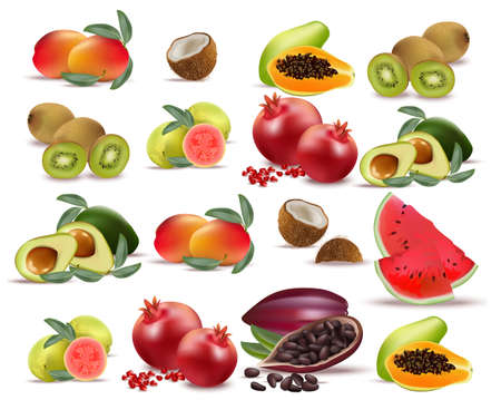 Fruits coconut, avocado, papaya, kiwi, pomegranate, fresh cocoa, guava Collection set Vector