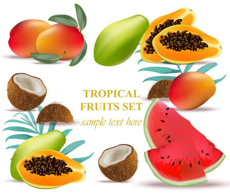 Fruits coconut, avocado, papaya, kiwi, pomegranate, fresh cocoa, guava Collection set Vector