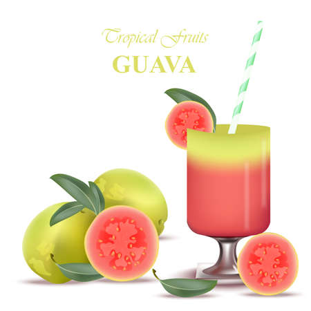 Smoothie Guava Vector exotic fruits cocktail