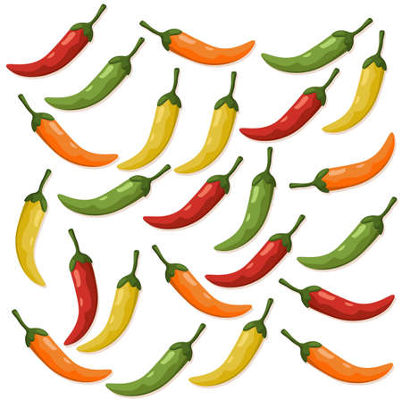 Hot Chili peppers pattern detailed colorful vector illustration template background