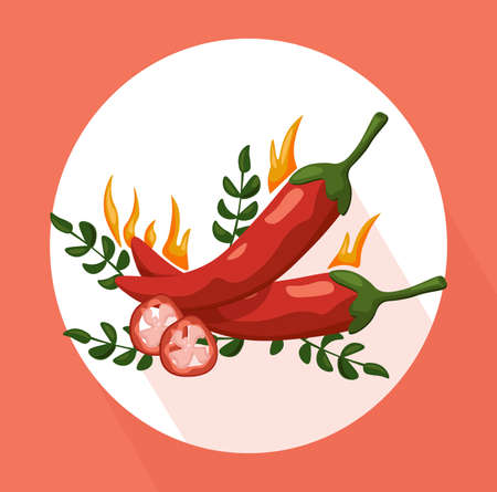 Hot Chili peppers icon detailed vector illustration template