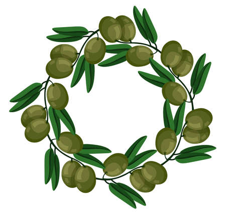 twigs: Green olives wreath Vector illustration. Natural decor of plants. Vector cartoon illustration. Green, cute. White background isolated. Flat simple design, trendy style Illustration