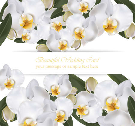 Orchid flowers card banner poster realistic background Vector illustration