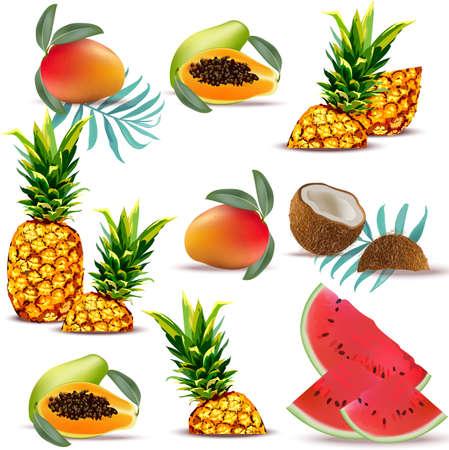 夏の熱帯フルーツのパパイヤ、パイナップル、新鮮なココナッツ、スイカ、マンゴー コレクション設定ベクトル イラスト