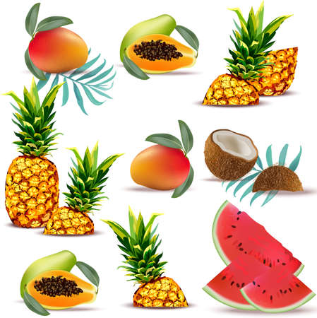 Summer tropic fruits papaya, pineapple, fresh coconut, watermelon, mango Collection set Vector illustrations Illustration
