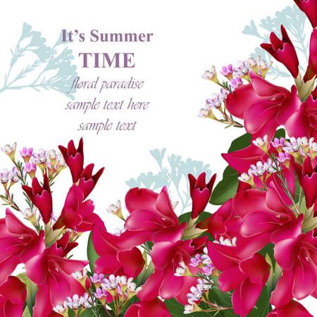 Gladiolus blüht Sommerblumenstrauß. Einladungskarte süße Dekor Vektor-Illustration Standard-Bild - 85207417