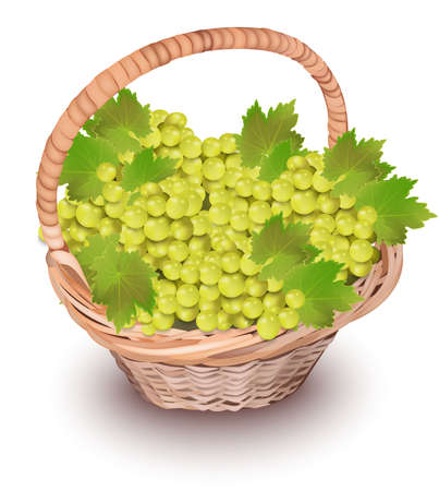 White grapes in a basket