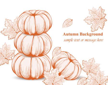 autumn colour: Pumpkin pattern background. Vector Line art hand drawn graphic style illustration