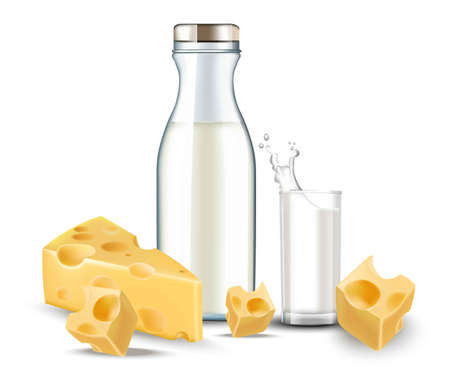 Cheese and milk realistic Vector. Detailed diary meal bio organic Illustration