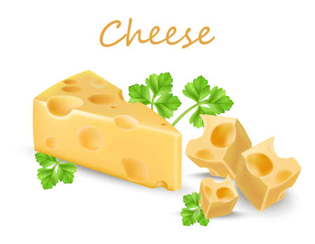 Holland cheese slice isolated on white. Vector realistic detailed products