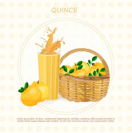 Quince juice splash Vector. Organic fresh drink