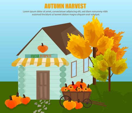Farm house with fresh pumpkin Vector. Autumn background. flat style