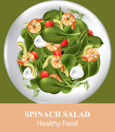 Spinach salad with shrimps. Realistic Vector food illustration Illustration