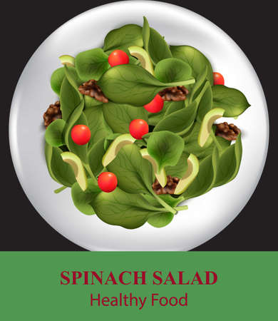 Spinach salad with avocado. Realistic Vector food illustration