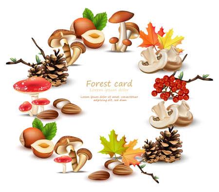 きのこ、ナッツ、葉、松ぼっくりベクトル秋背景とフォレスト花輪  イラスト・ベクター素材