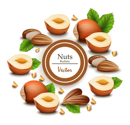 Template label design illustration with realistic nuts.