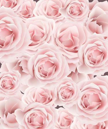 Delicate roses pattern background Vector. Floral template design. Romantic pastel pink. Vetores