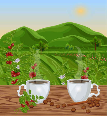 Two cups of coffee with landscape view Vector. Green fields of Coffee beans harvest