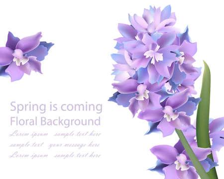Violet flowers card. Spring background Vector Illustration