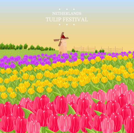 Spring card with tulips and a mill. Vector illustration Ilustracja