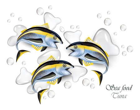 Fresh tuna fish vector realistic. Water splash background.