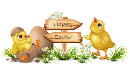Easter card with cute chicken vector. Cracked eggs, wooden sign, place for text. Stock Illustratie