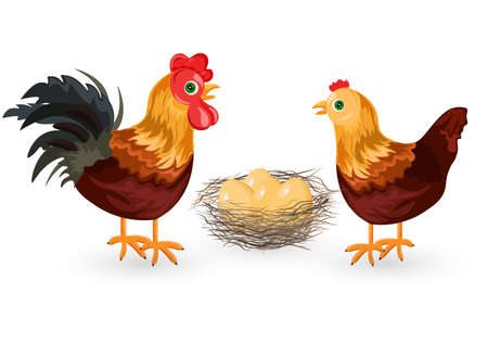 Rooster chicken and eggs design