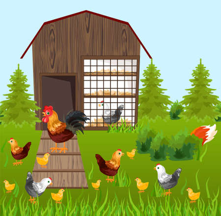 Chicken coop template designs