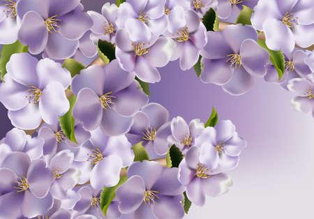 Fond de fleurs violettes Vector réaliste. Illustrations 3d de fond floral de printemps Vecteurs