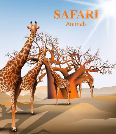 Giraffe and baobab tree safari background Vector. Animals wildlife illustration