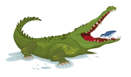 Crocodile and a bird Vector. Cartoon character illustrations Ilustração