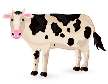 Cow isolated on white Vector. Cartoon character detailed illustrations