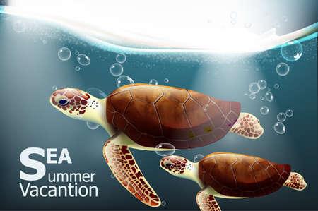Galapagos turtles Vector. Summer undersea card with cute turtles 일러스트